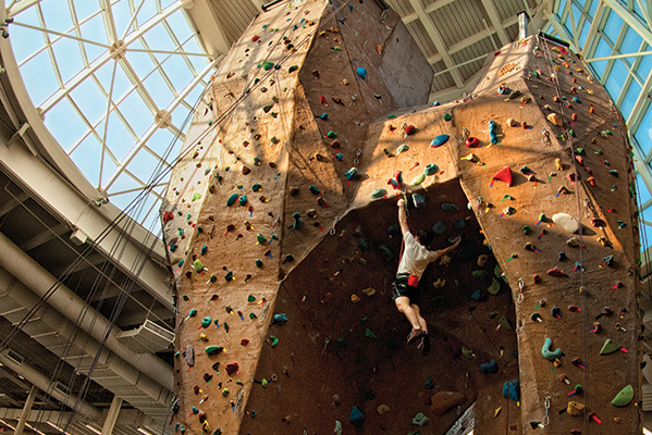 Rock climbing wall at the Pohl Recreation Center